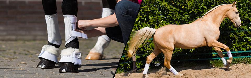 b-boots header image 3